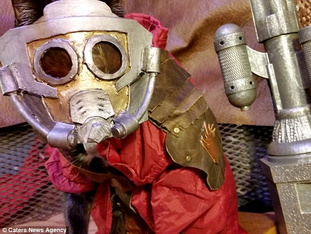 358A653900000578-3654010-Star_Lord_Fawkes_dressed_as_the_main_character_from_the_Guardian-a-43_1466588160649